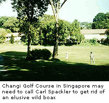 Changi Golf Course