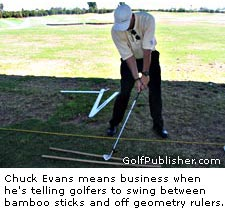 Evans Stick