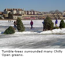 Tumble-Trees